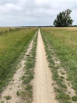 Foto vertical de um caminho em um prado sob um céu nublado