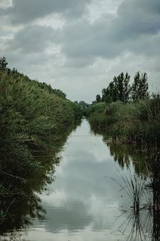 Foto vertical de um lago cercado de grama