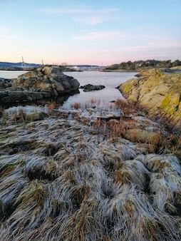 Foto vertical de um rio cercado por uma paisagem única em ostre halsen, noruega