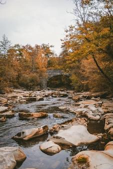 Foto vertical de um rio com muitas pedras cercado por árvores de outono perto de uma ponte de concreto