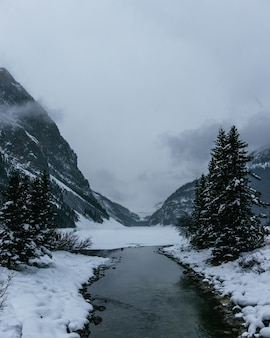 Foto vertical de um rio estreito fluindo perto das montanhas cobertas de neve