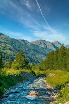 Foto vertical de um rio no fundo de pinheiros e montanhas