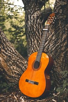 Foto vertical de um violão apoiado no tronco de uma árvore no meio de uma floresta