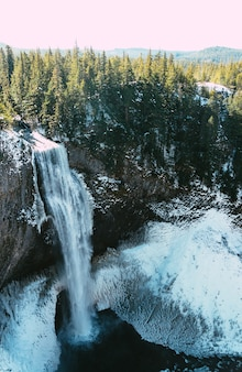 Foto vertical de uma bela cachoeira e uma floresta no inverno