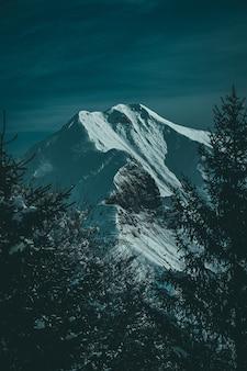 Foto vertical de uma bela montanha coberta de neve e pico emoldurado por árvores alpinas
