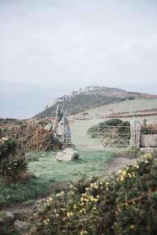 Foto vertical de uma bela paisagem com um portão de metal e diferentes plantas