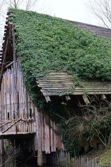 Foto vertical de uma casa de madeira coberta de plantas verdes