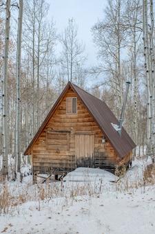Foto vertical de uma casa de madeira marrom no meio de um bosque nevado