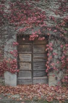 Foto vertical de uma casa velha cercada por galhos de árvores no outono