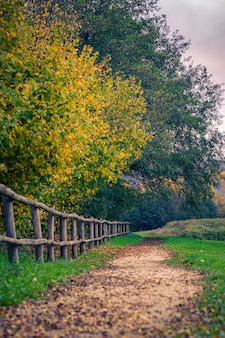Foto vertical de uma cerca de madeira e um caminho em um parque de outono