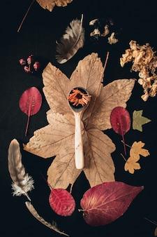 Foto vertical de uma colher de pau cercada por diferentes folhas de plantas e penas