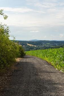 Foto vertical de uma estrada de cascalho passando por plantas e uma bela fazenda