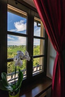 Foto vertical de uma flor branca perto da janela com uma bela vista