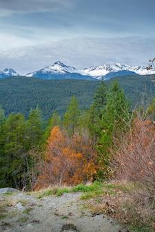 Foto vertical de uma floresta de outono cercada por uma paisagem montanhosa no canadá
