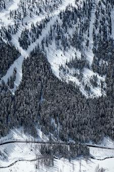 Foto vertical de uma montanha arborizada coberta de neve em col de la lombarde