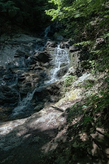 Foto vertical de uma pequena cachoeira na floresta