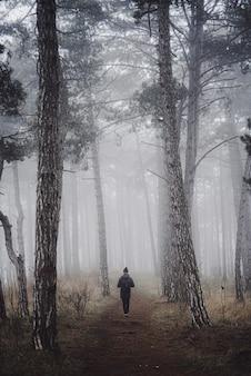 Foto vertical de uma pessoa caminhando em uma floresta em uma manhã de nevoeiro