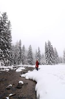 Foto vertical de uma pessoa com um casaco vermelho em pé em um campo coberto de árvores e neve no inverno