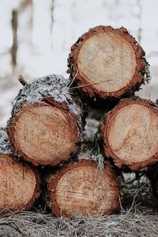 Foto vertical de uma pilha de toras de madeira