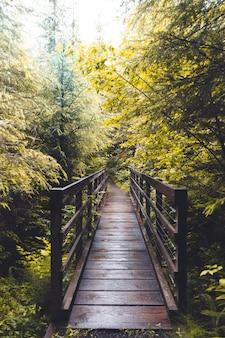 Foto vertical de uma ponte de madeira no meio da floresta