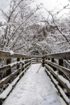 Foto vertical de uma ponte de madeira no meio de árvores nevadas no inverno