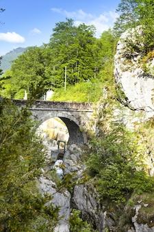 Foto vertical de uma ponte de pedra sobre o rio cercada por árvores em ain, frança