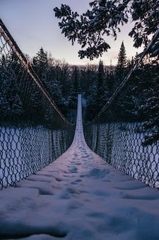 Foto vertical de uma ponte pênsil em direção a uma bela floresta de abetos coberta de neve