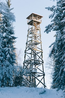 Foto vertical de uma torre de vigia de madeira entre as árvores cobertas de neve