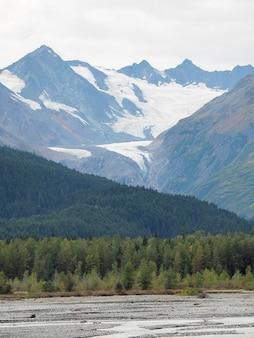Foto vertical do campo coberto de árvores e montanhas nevadas durante o dia