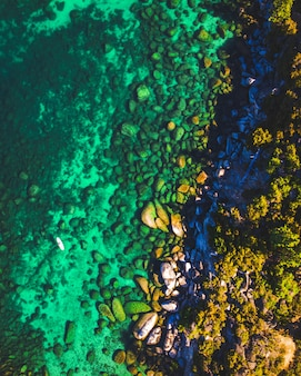 Foto vertical do lago tahoe em stand up paddleboard