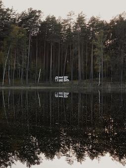 Foto vertical do reflexo de árvores altas no lago do parque