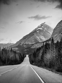 Foto vertical em tons de cinza de uma rodovia no centro de uma floresta e altas montanhas no