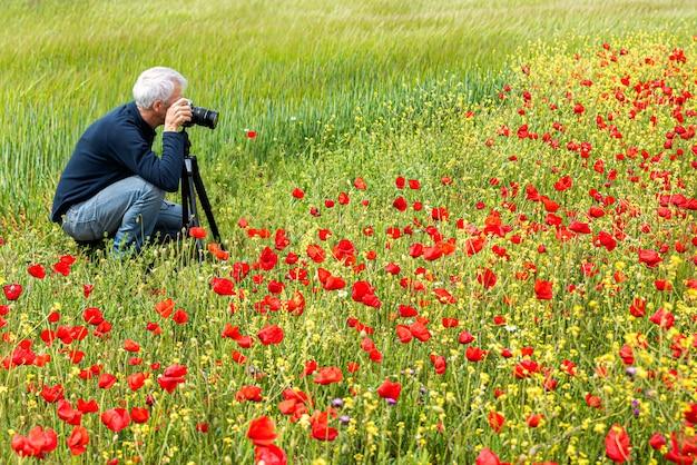 Fotografando campo de papoula no verão