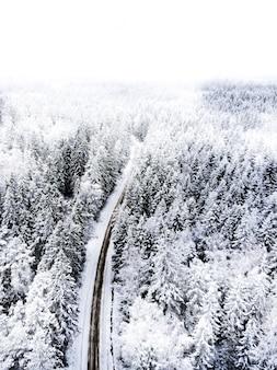 Fotografia aérea de estrada entre árvores durante o inverno
