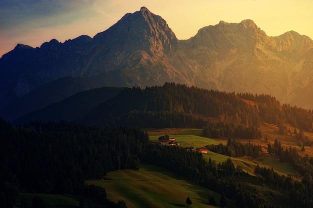 Fotografia de paisagem de montanha e floresta