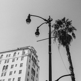 Fotografia de rua de los angeles