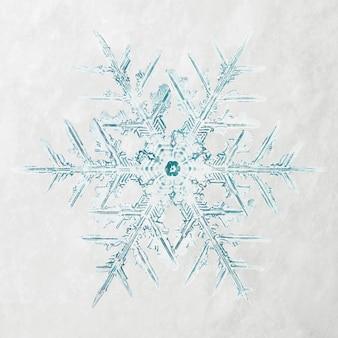 Fotografia macro de enfeite de natal de floco de neve de inverno, remix de fotografia de wilson bentley