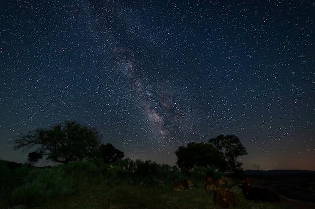 Fotografia noturna na área natural de barruecos. extremadura. espanha.
