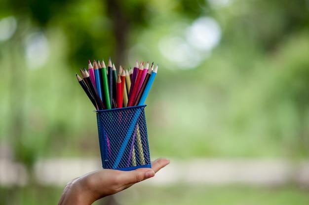 Fotos de mão e lápis, cor de fundo verde conceito de educação