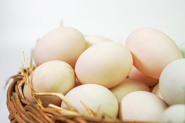 Fotos de ovos de pato.
