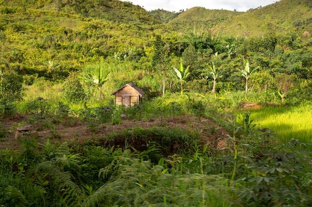 Fotos de paisagem do país de madagascar, com montanhas e prados