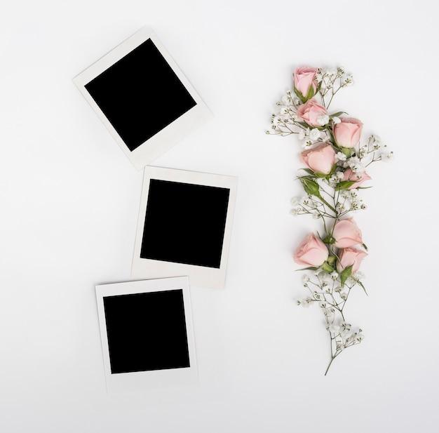 Fotos em branco polaroid com ramo de rosas cor de rosa