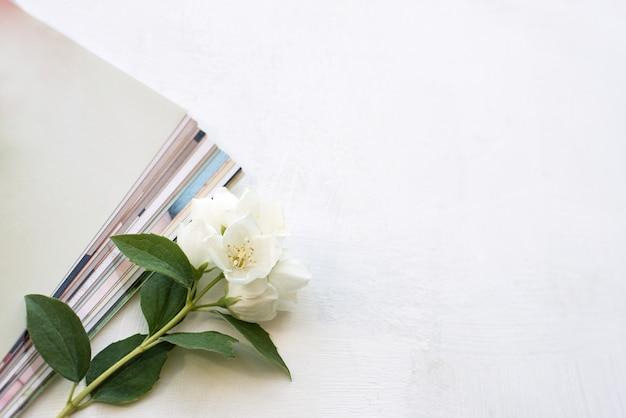 Fotos impressas, cartões-quadro, sobre um fundo azul com uma flor branca. brincar.