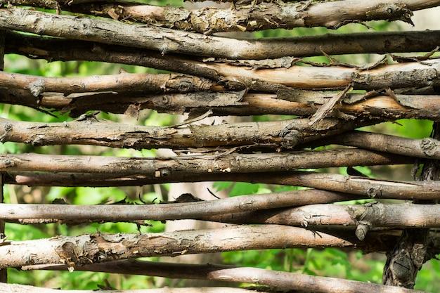 Fragmento da sebe de ramos retorcidos