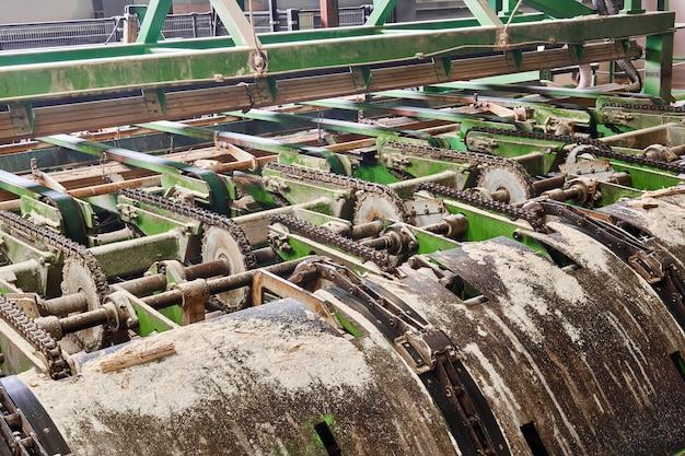 Fragmento de uma linha de transporte de equipamentos de serraria dentro de uma moderna serraria