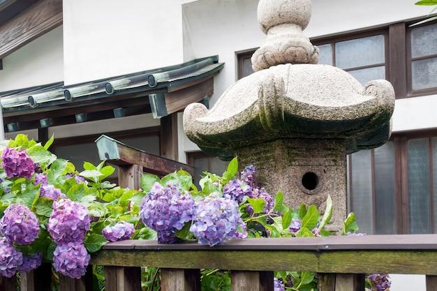 Fragmento do pequeno pátio do templo com cerca de madeira, hortênsias em flor e lanterna de pedra