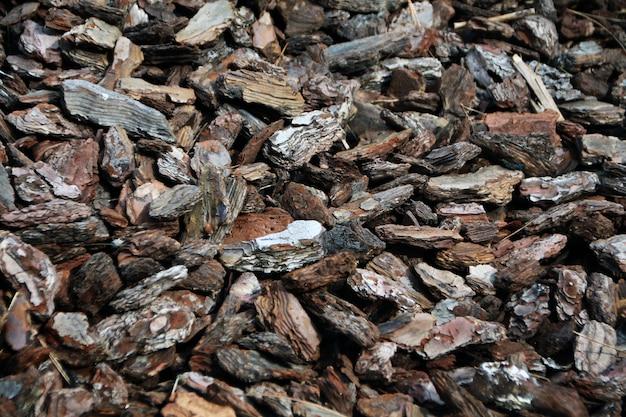 Fragmentos esmagados textura casca de madeira.
