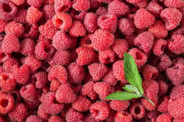 Framboesa. bagas orgânicas frescas e doces. superfície da fruta
