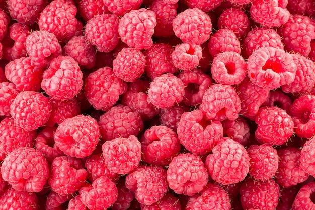 Framboesa. bagas orgânicas frescas. fundo de framboesas frescas.