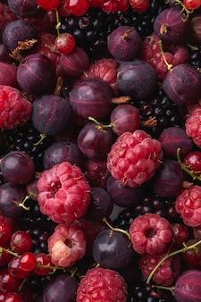 Framboesa madura fresca saborosa, amora, groselha e bagas de groselha vermelha, textura de comida saudável, macro vista superior